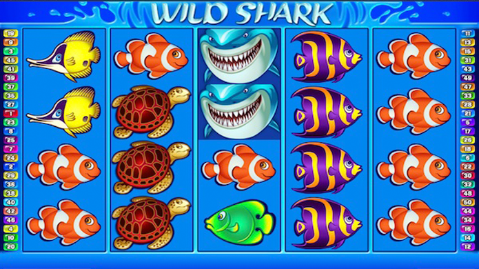 Wild Shark Pokie